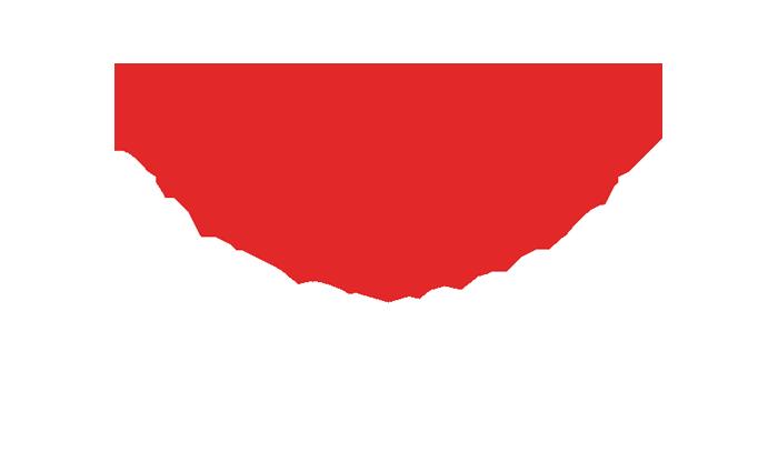 Virtuality Live Partner - Substance
